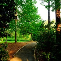 Aldridge-Garden---Trail-thru-woods---5